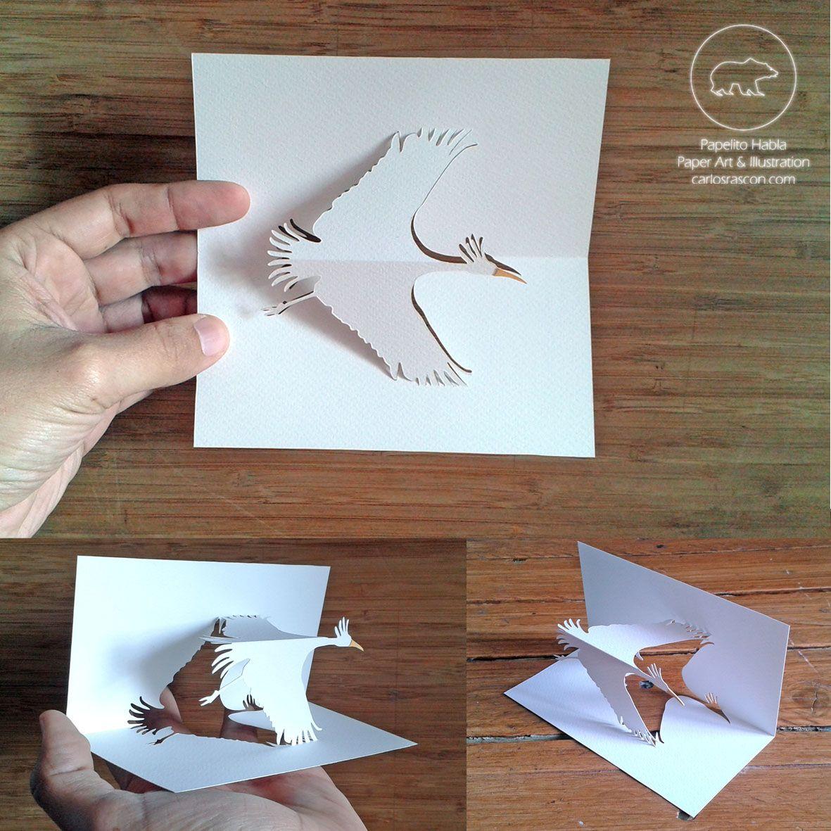 And my first #kirigami piece called The #Flight of the #Crane  Read the whole story http://carlosrascon.com   #papercut #cutpaper #cutout #papercutting #papelpicado #papelcortado #papelcalado #papertallat #arteconpapel #paperart #crane