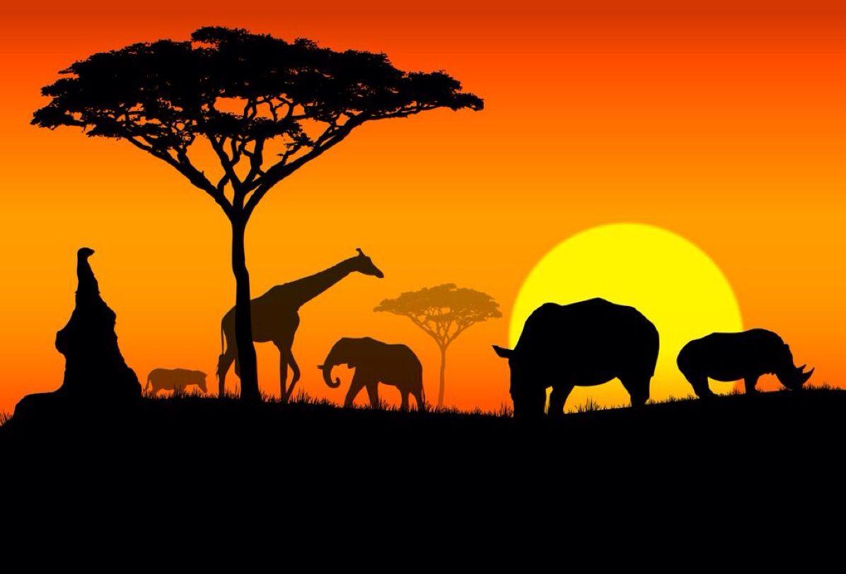 I speak of Africa and golden joys H4 2 (5:3)