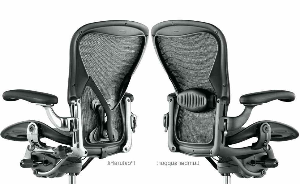 Posturefit Chair Ergonomic Rocking Aeron Lumbar Support Vs Chairs Buying Guide