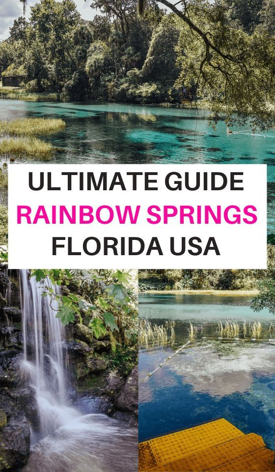 Photo of 20 Photos to Inspire you to visit Rainbow Springs State Park