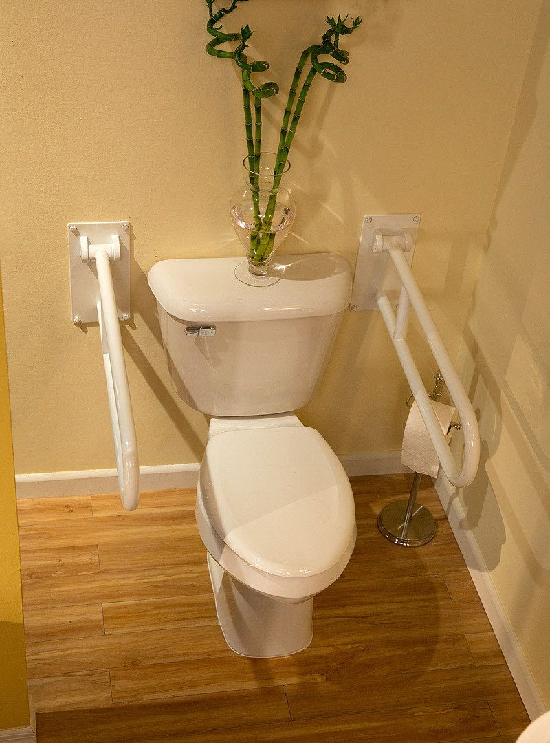 Toilet And Support Rails | Premier Care In Bathing®