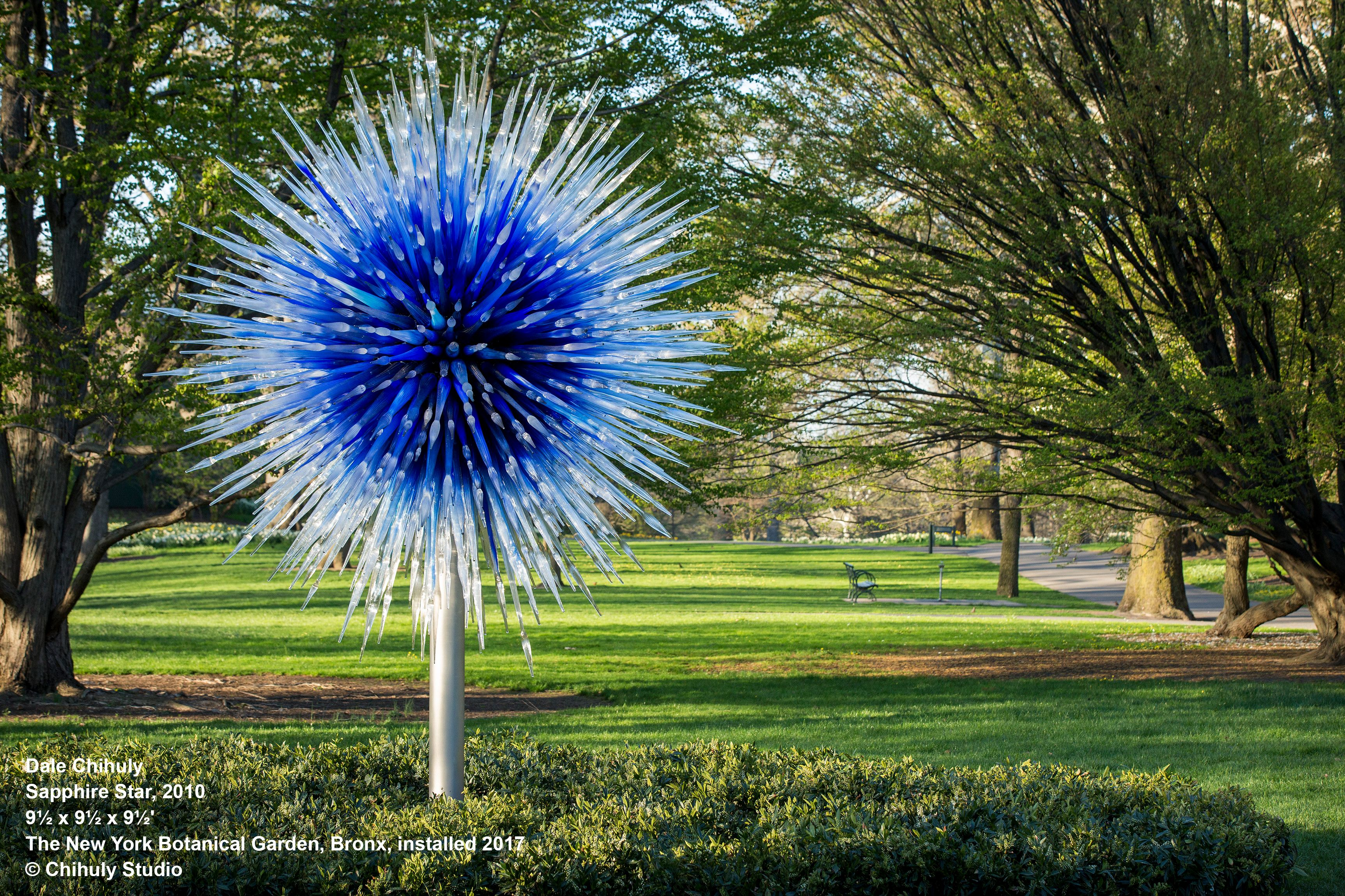 9bfb825f596523b4548e1a1968e1bac5 - Dale Chihuly St Louis Botanical Gardens