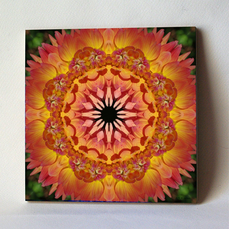 dahlia mandala ceramic tile, nature photograph, peach apricot