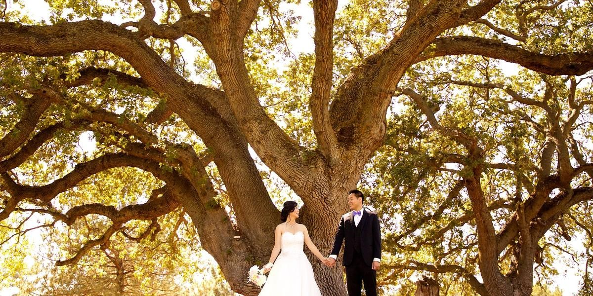 The Clubhouse At Boundary Oak Weddings Get Prices For East Bay Wedding Venues In Walnut