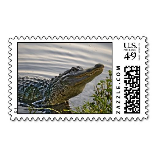 HDR Gator Stamp lowest price for you. In addition you can compare price with another store and read helpful reviews. BuyReview          HDR Gator Stamp Review on the This website by click the button below...