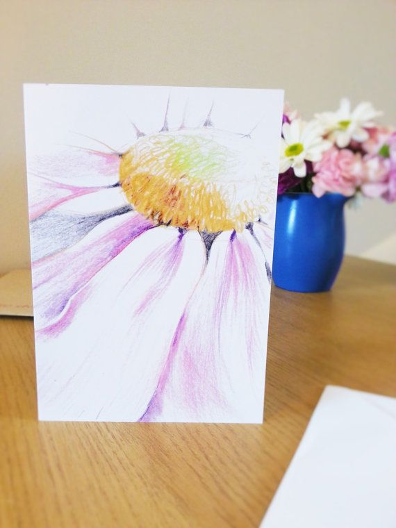 2 50 Coloured Pencil Pink Gerbera Daisy Flowers Drawing Delicate