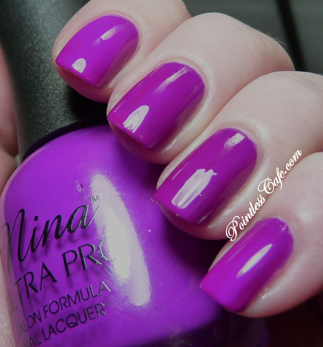 Nina Ultra Pro Punki Purple - Swatches and Review   Pointless Cafe ...