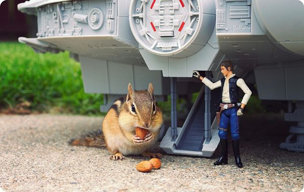 These are adorable. Chipmunks Hanging Out With #StarWars Action Figures