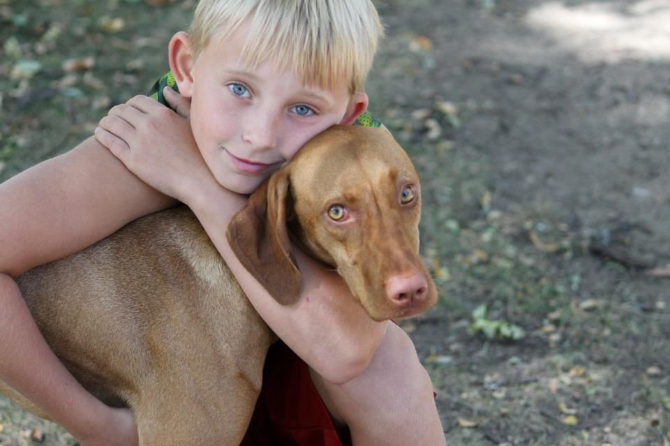 My son and our Viszla puppy... Nothing like a boy and his dog!