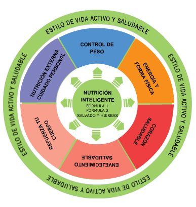 Como Comenzar Tu Estilo De Vida Saludable Y Activo Estrategia Global En Alimentación Actividad Física Y Salud Pública Nutrition Nutrition Tips Energy Fitness