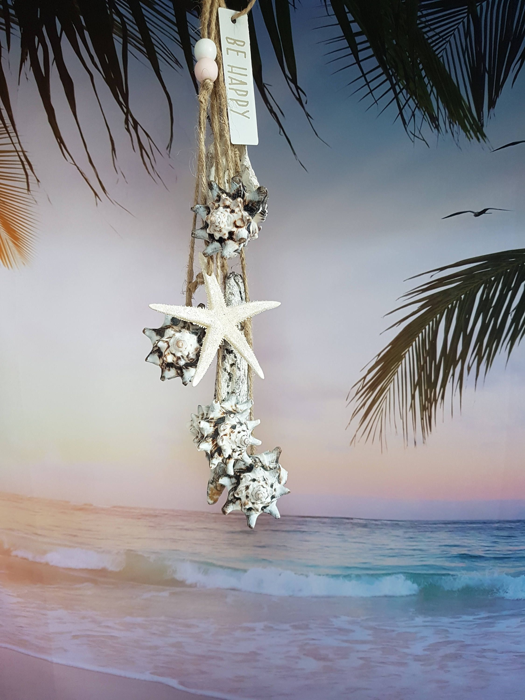 Driftwood Schelpen Decoratie Zeester Beach Cadeau Strand Etsy Schelpen Schelpen Hanger Decoratie