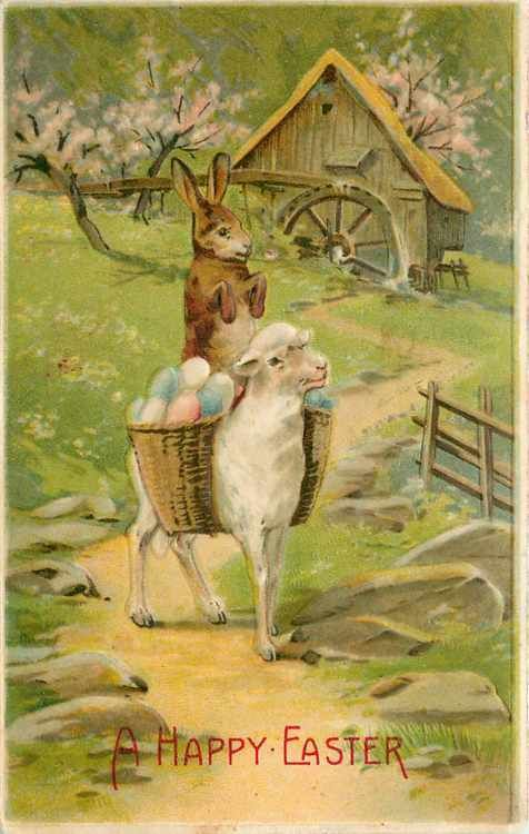 Antique Easter Postcard Bunny Riding Lamb With Egg Basket