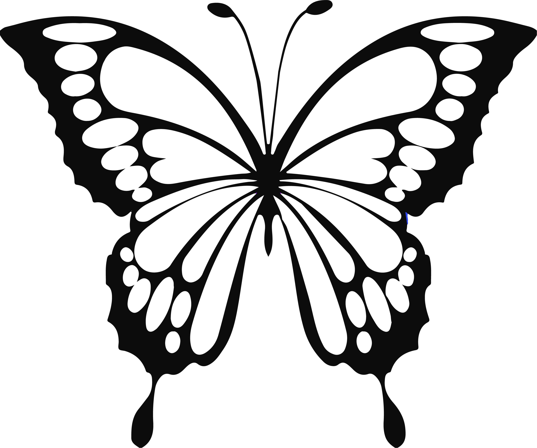 Download Free Butterfly SVG Files   Butterflies svg, Butterfly ...