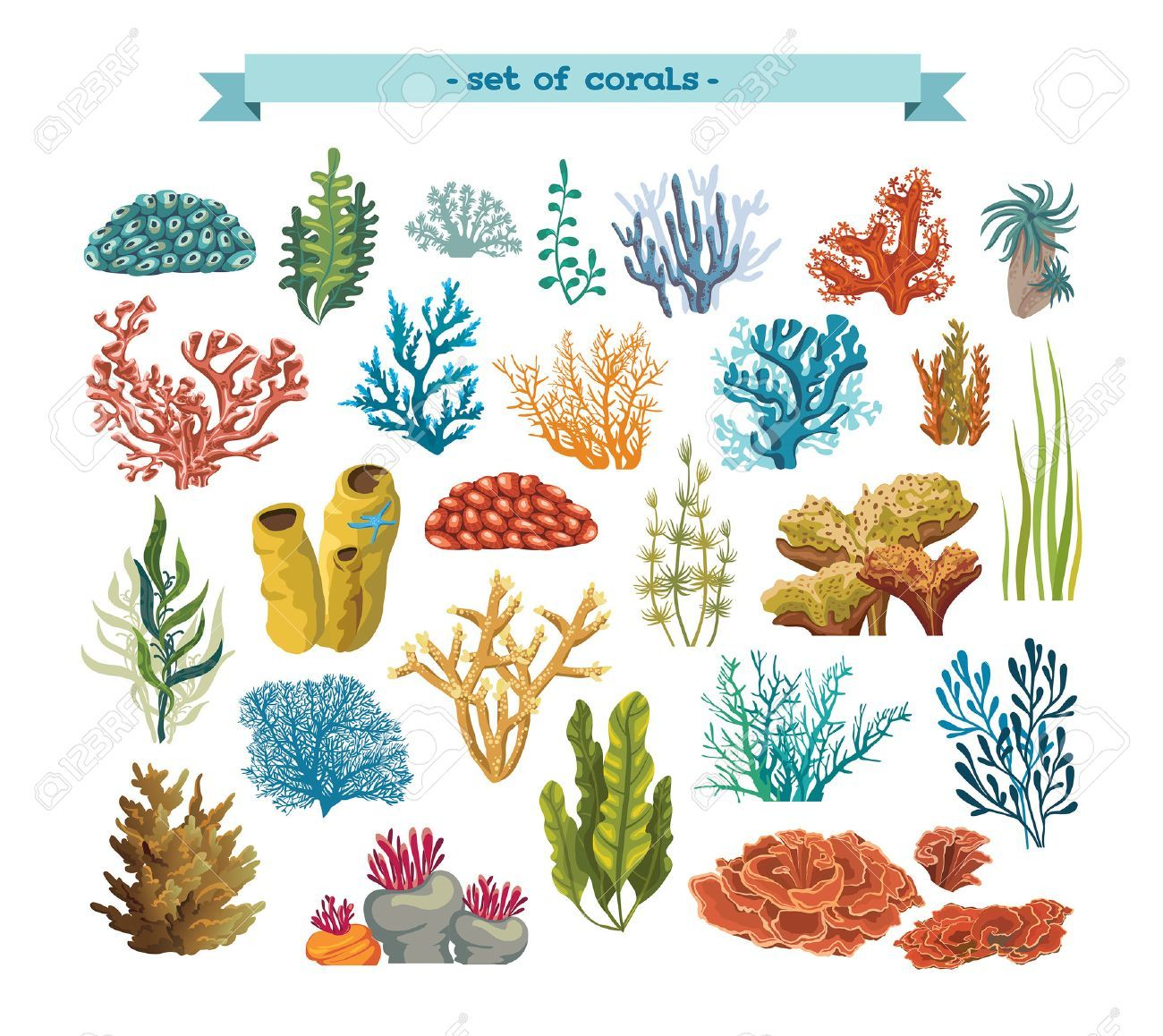 Set Of Isolated Colorful Corals And Algaes On A White Background Coral Reef Art Coral Art Coral Painting