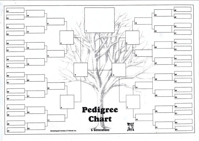 free six generation pedigree chart generation family pedigree