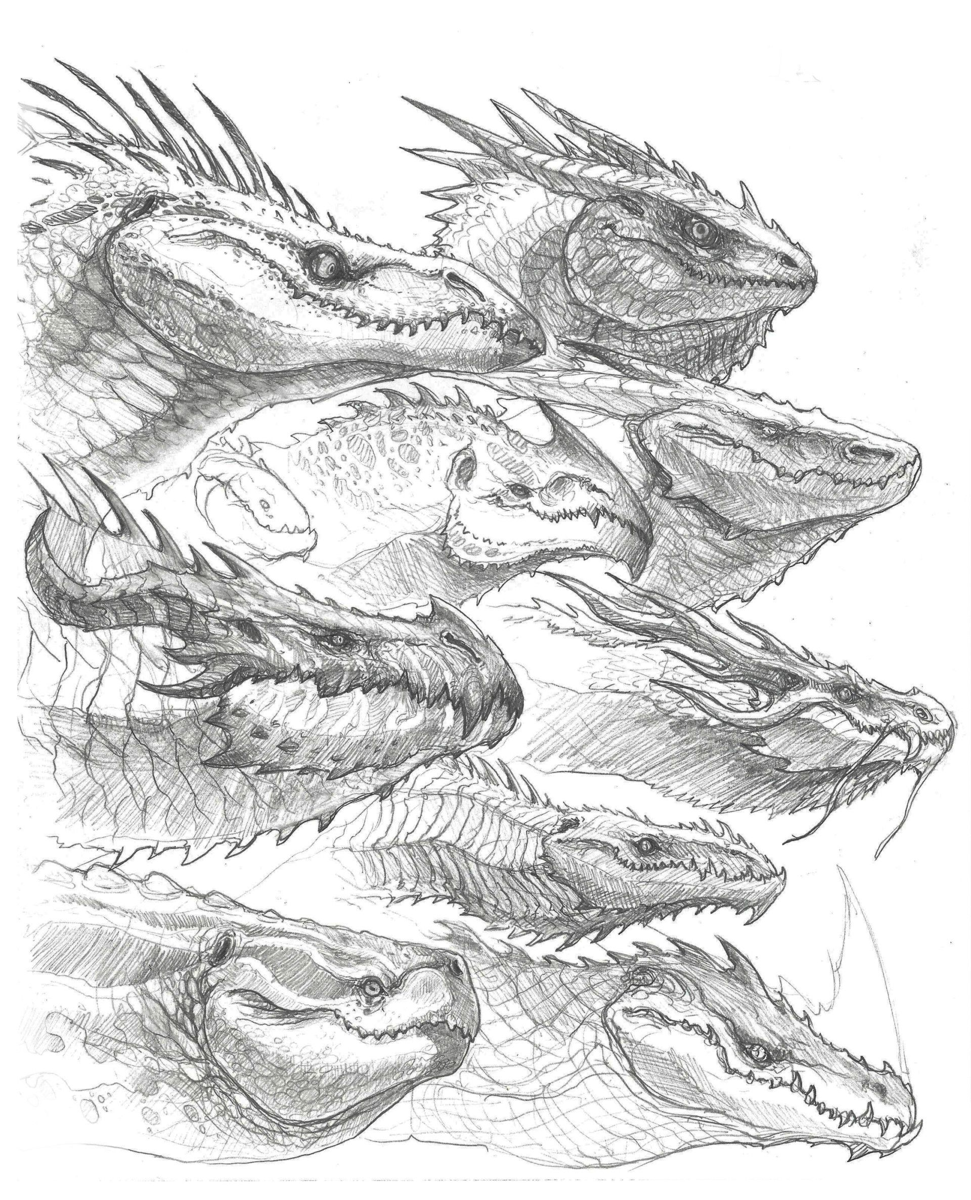One Night I Was Doodling Up A Bunch Of Dragon Heads Just To