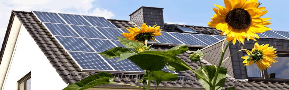 Solar Power Installation For Texas Homes And Business 866 933 6344 Serving Austin San Antonio Houston Dallas Fort Solar Panels Solar Best Solar Panels