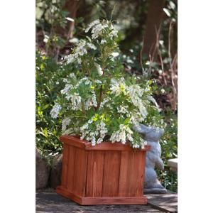 Pennington 40 In X 12 In Wood Planter Box Backyard Wood