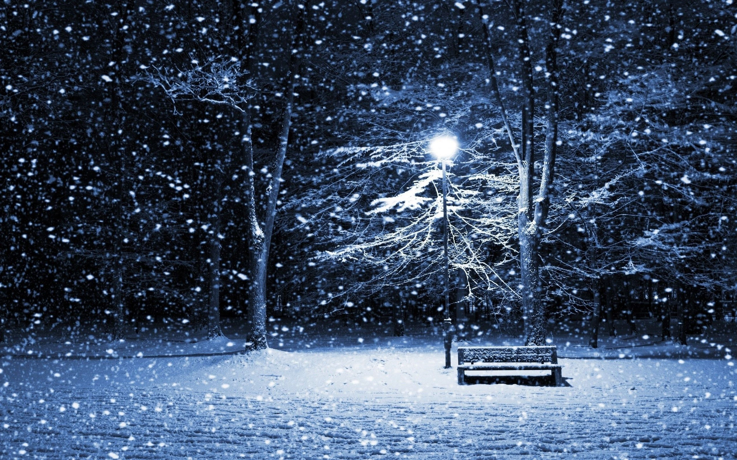 Park Bench In Snow At Night Wallpaper
