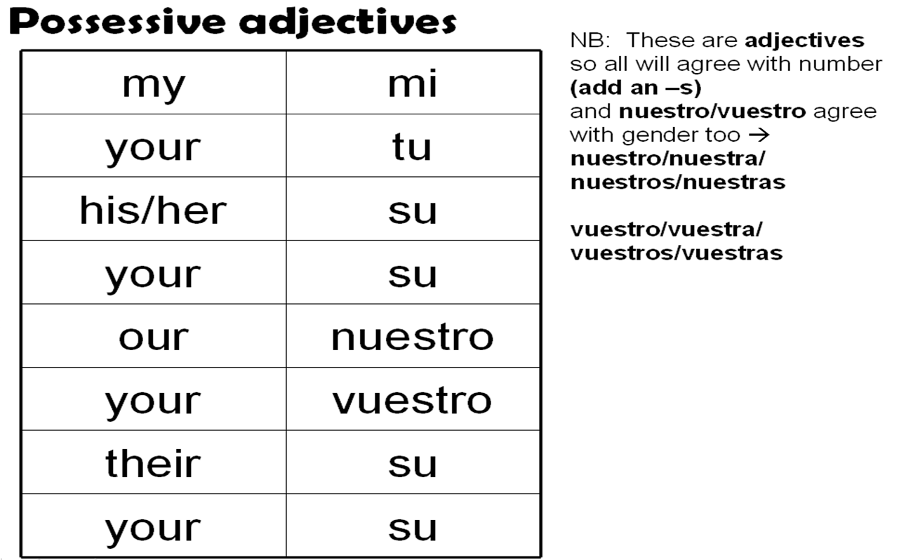 Printables Possessive Adjectives Spanish Worksheet 1000 images about possessive adjectives showing possession los adjetivos posesivosla on pinterest spanish s