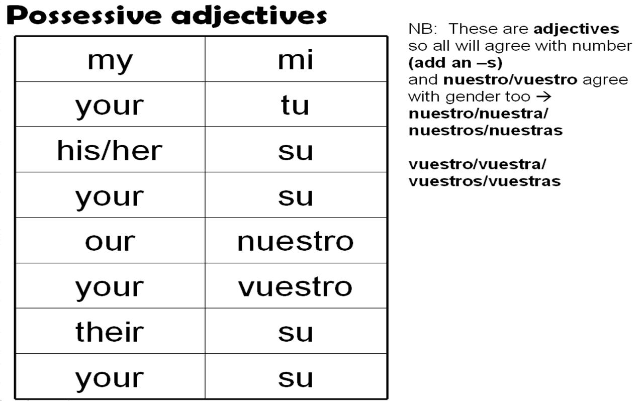 worksheet Possessive Adjectives Spanish Worksheet possessive adjectives showing possession spanish language adjectives