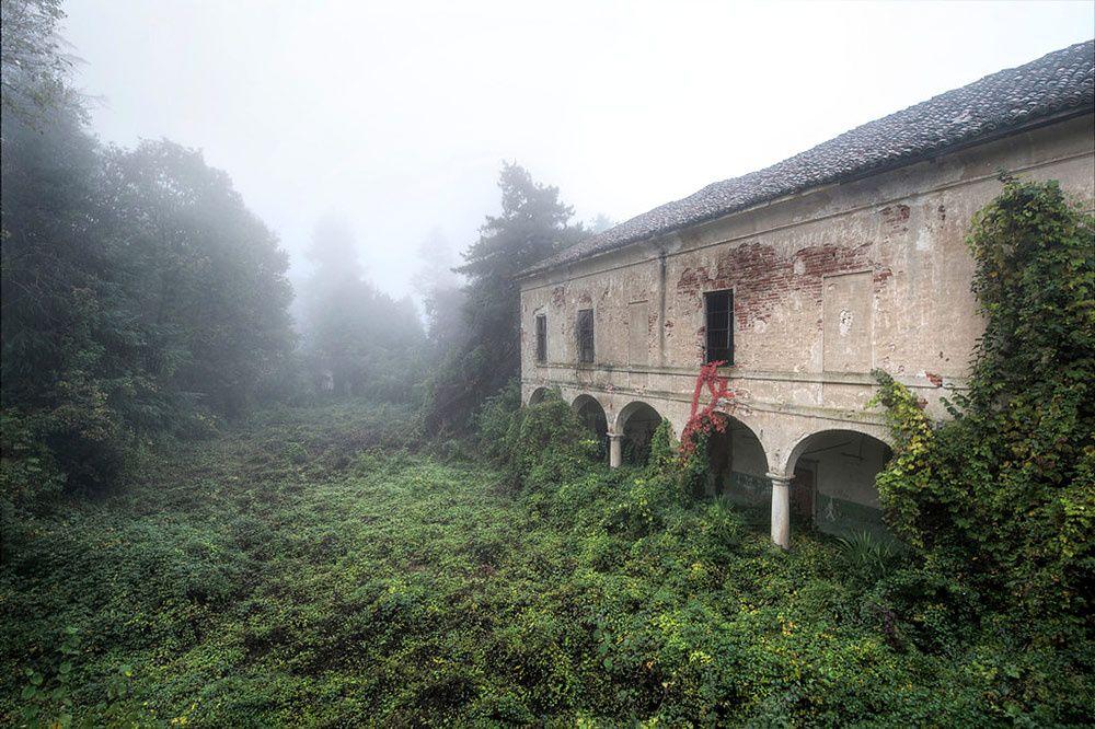 Niebla | Galería de fotos 10 de 19 | AD MX