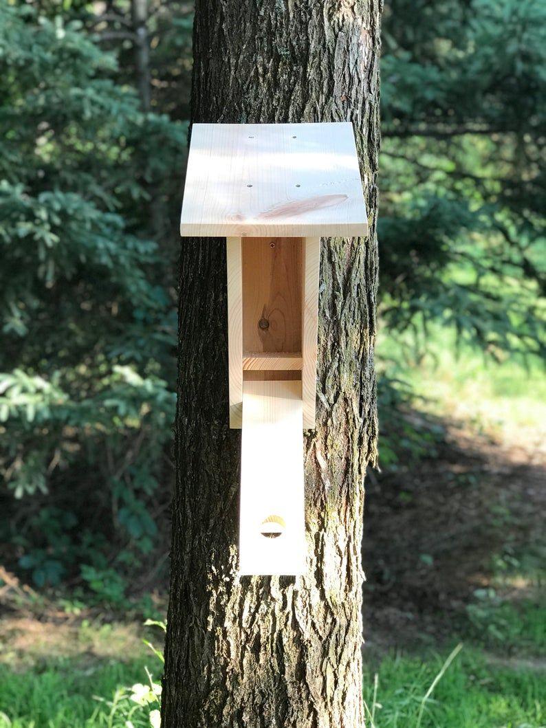 Peterson bluebird outdoor vogelhuisje, bluebird habitat