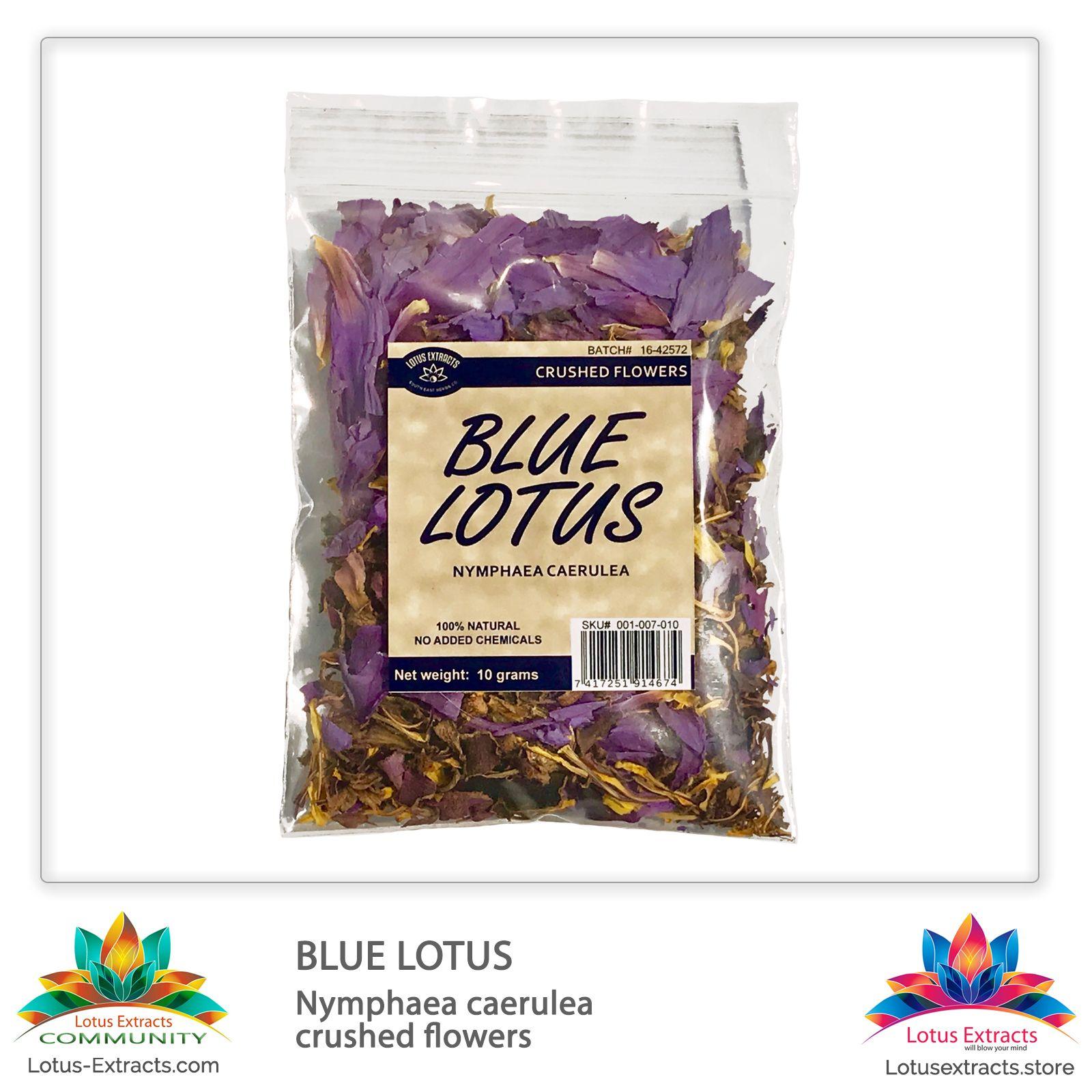 Blue Lotus Nymphaea Caerulea Crushed Flowers Blue Sacred Lotus