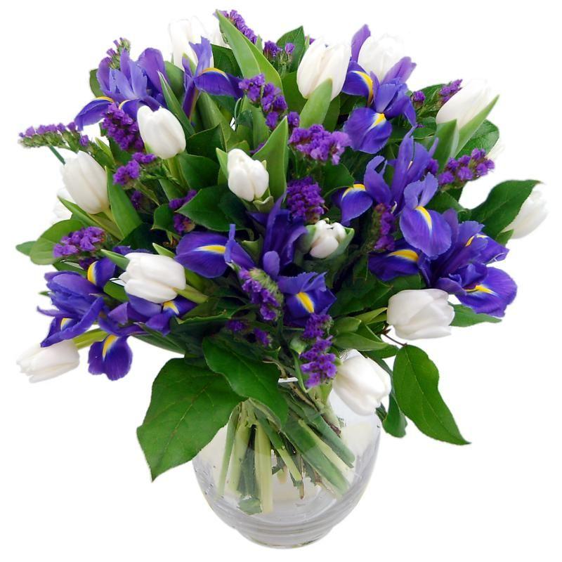 Blue Dew Fresh Flower Bouquet | Fresh Iris Flowers Delivered Next Day