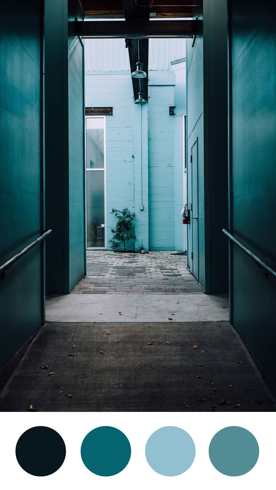 Cool Corridors Color Palette Emma Englishby Fossil Grey Cornflower Blue And Bondi