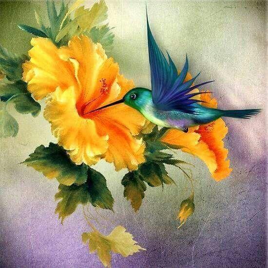 Colibri Color Hummingbird Art Painting Bird Art