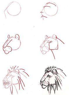 Dibujar Cabeza De Leon Aprender A Dibujar Animales Como Aprender A Dibujar Dibujos