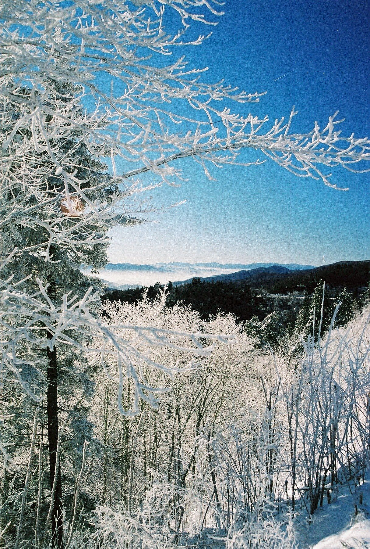 Winter is one of the most breathtaking season in the ...