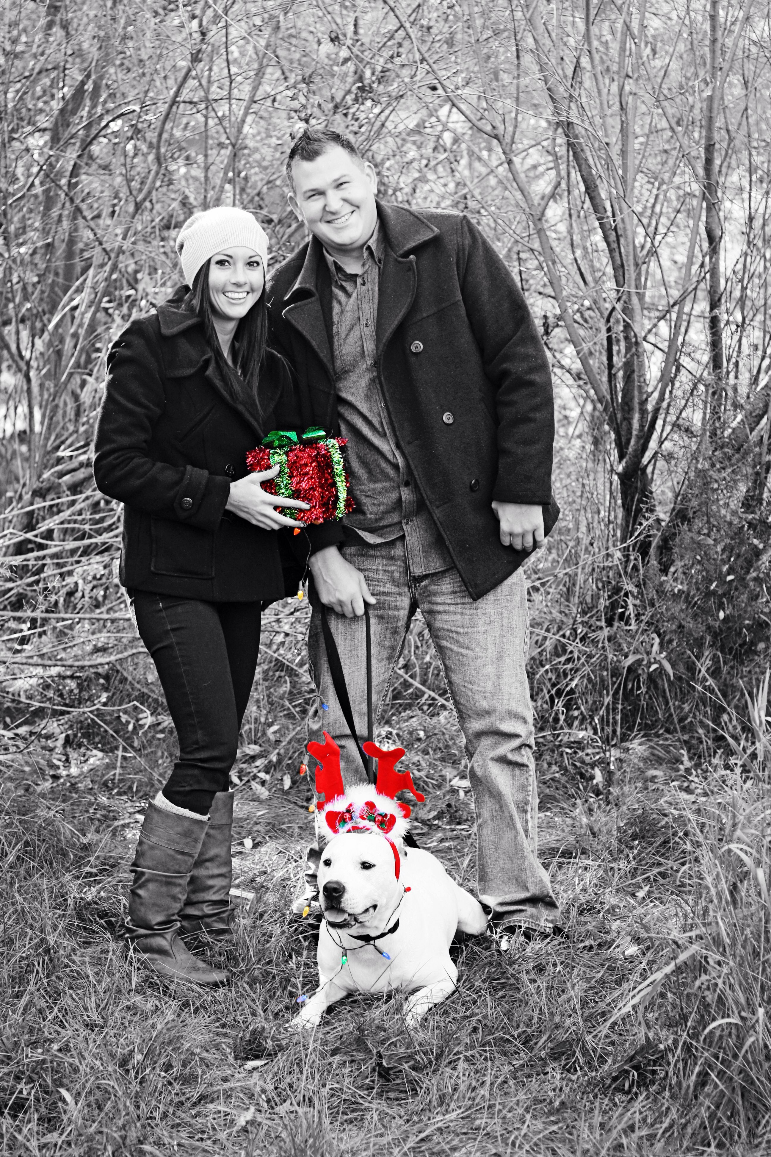 My love Couple photo ideas with dog graphy Couples s