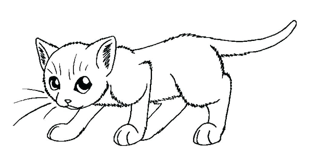 Wild Cat Coloring Pages P2157 Cute Cat Coloring Pages Wild Cats