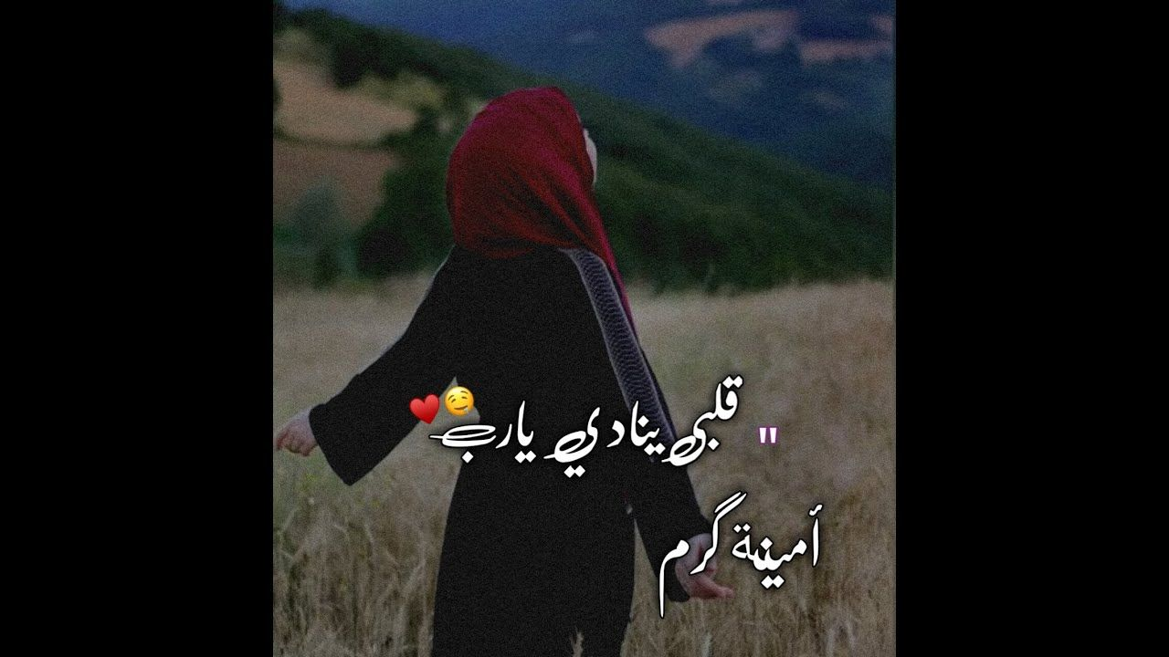 قلبي ينادي يارب امينة كرم حالات وتس اب دينية