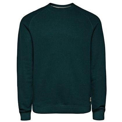 37405316d58d Grüner  Pullover, ein tolles  Basic, das in keinem  Kleiderschrank fehlen  darf