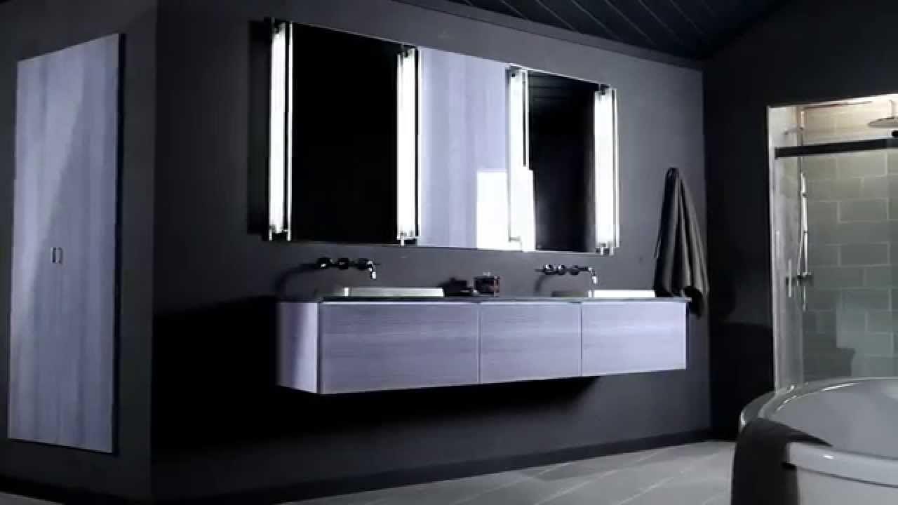 Stylish Vanity With Robern Medicine Cabinets Amazing Floating