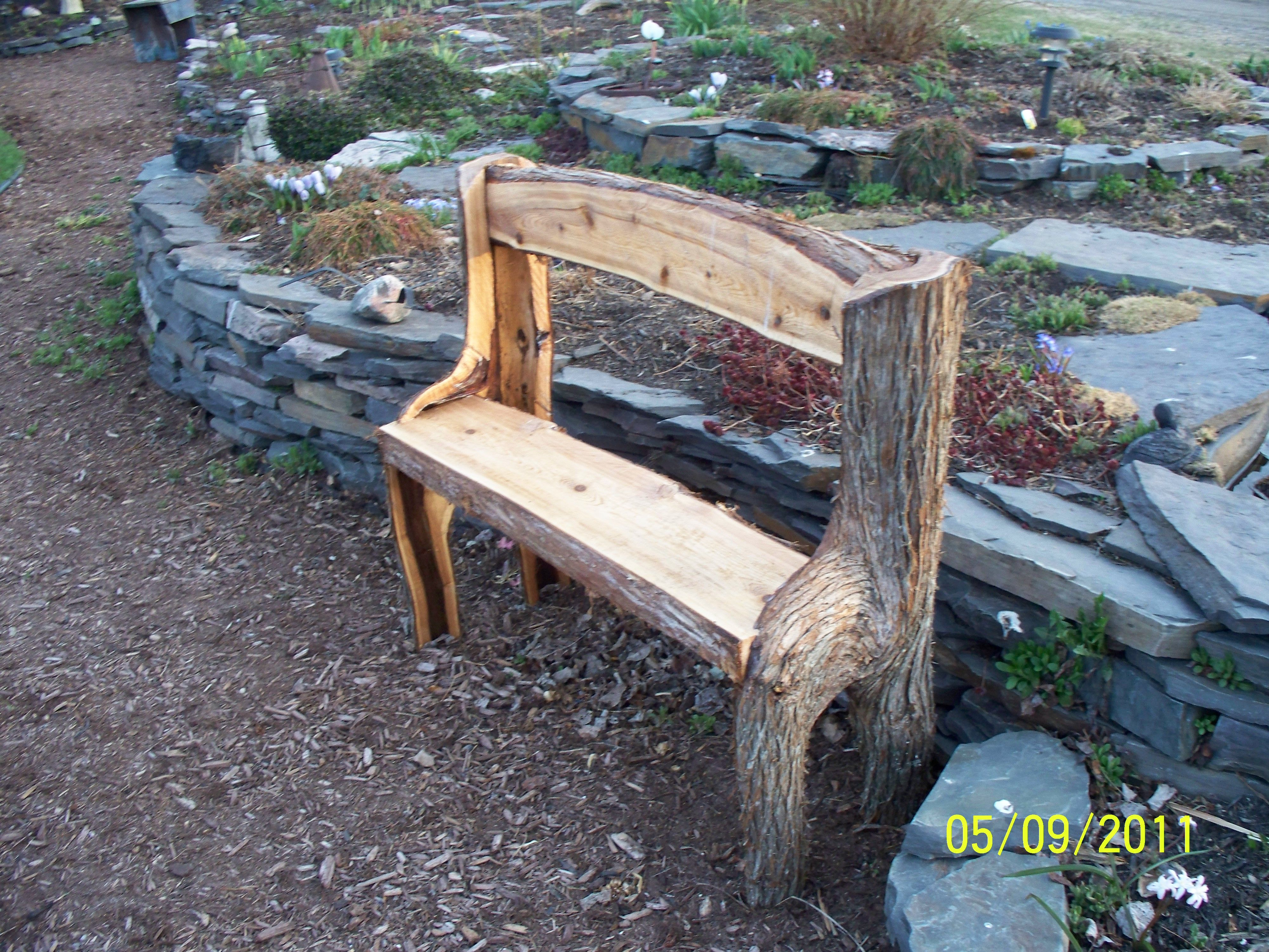 My Hubby Made Me A Bench Out Of A Tree Branch He Split It In Two And Turned It Upside Down And Added The Back And Seat Rustic Trees Bench Outdoor