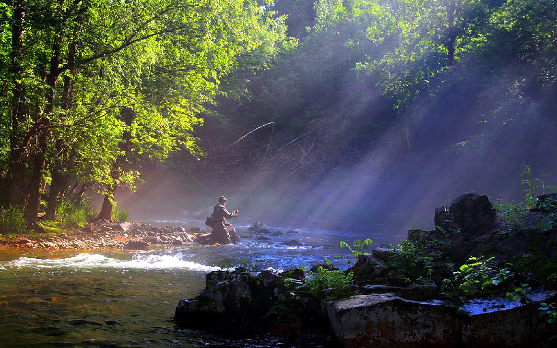 Trout Fishing Wallpaper | fly fishing picture fly fishing painting fly fishing trout fly fishing ...