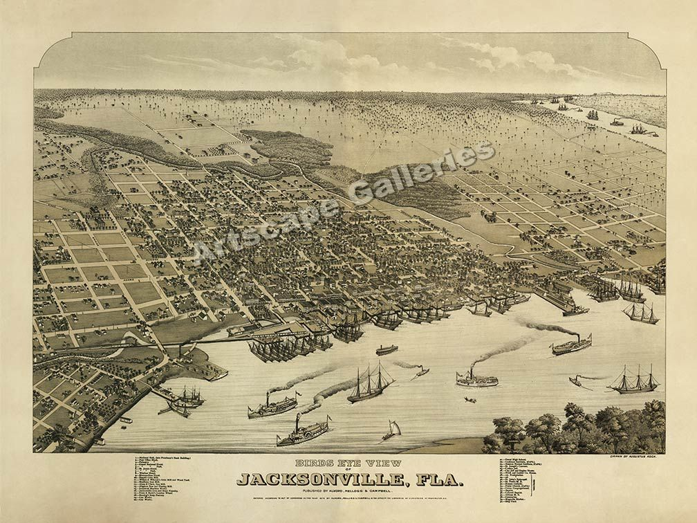 Jacksonville Florida 1876 Historic Panoramic Town Map - 24x32 ...