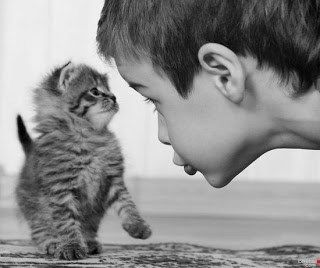 Funny Life Lessons Kids Can Learn From Cats Funny Life - 20 adorable photos proving that children really need a cat in their life