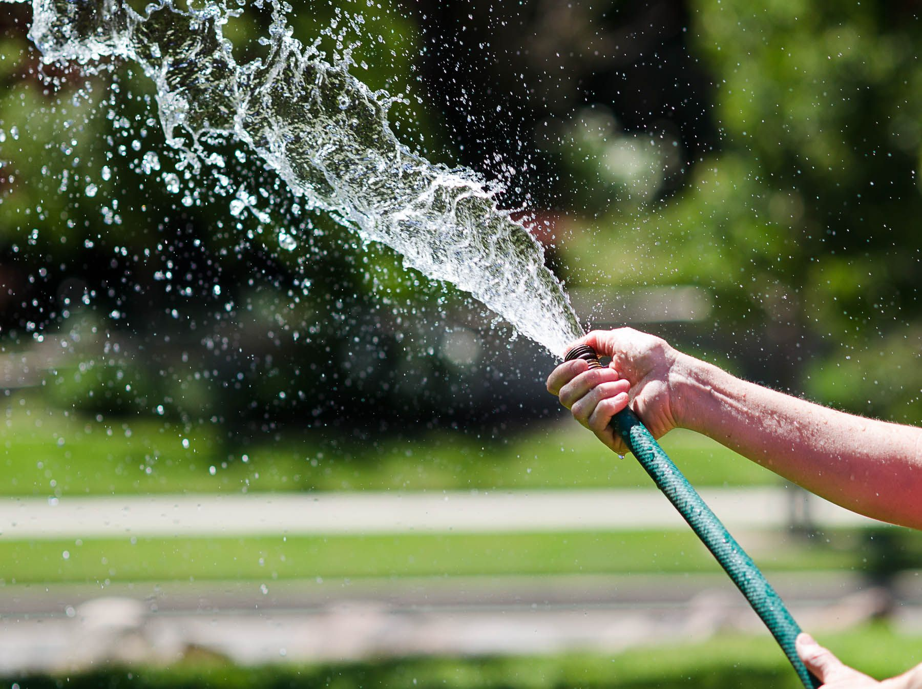 8 tips on how to keep your utah lawn green in the summer