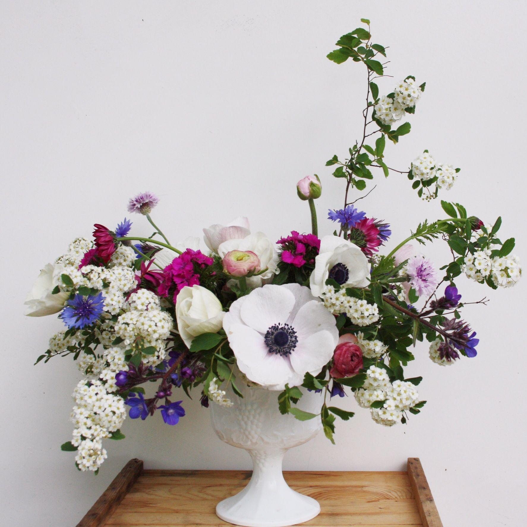 Pretty Spring Flower Design Love The Airiness Of Bridal Veil Spores