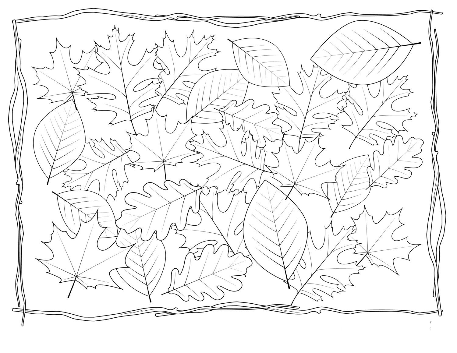 Leaf coloring page | Coloring For Kids | Pinterest | Heritage ...