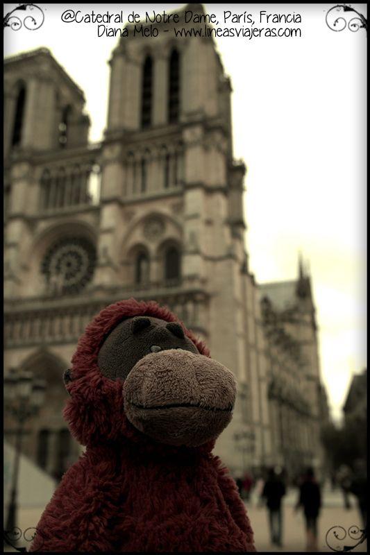 Marco Polo en la Cathédrale Notre-Dame de Paris | Marco Polo por el ...