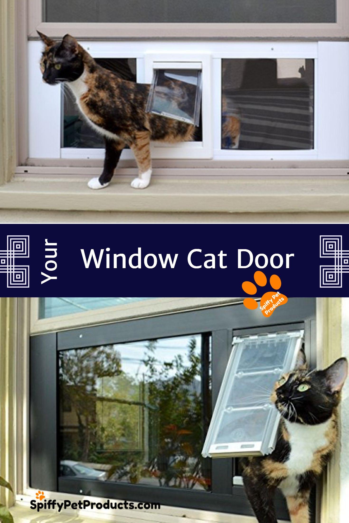 Window Mounted Cat Doors Rule