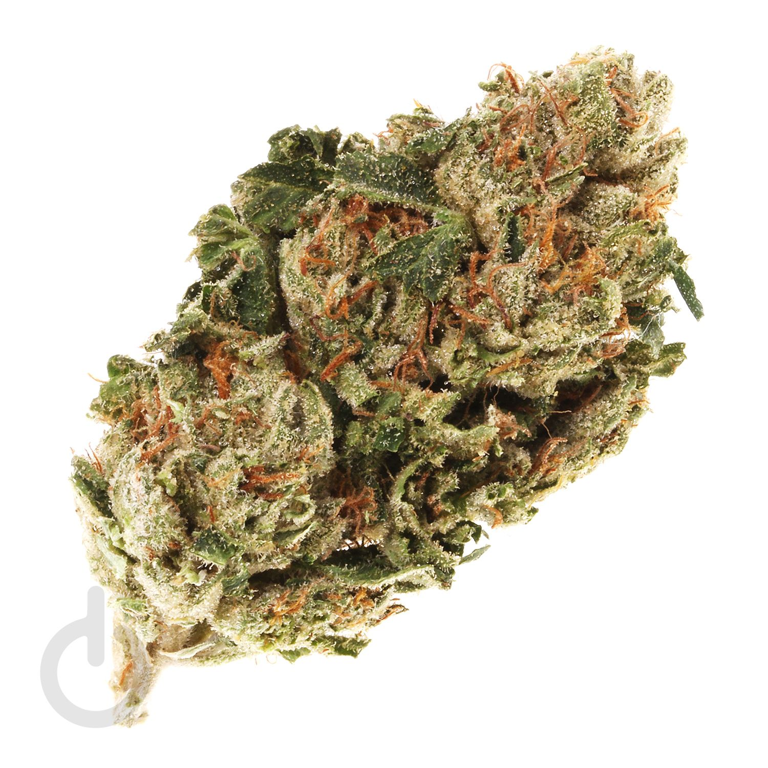 Pin on Strain of the Day
