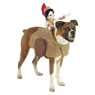 Pet Halloween Costumes Gladiator Chariot Pet Costume Pet