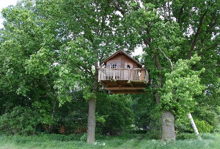 Baumhaus   Baumhaus Aussen   Pinterest   Bäume, Haus Und Baumhäuser Wendeltreppe Um Einen Baum Baumahus
